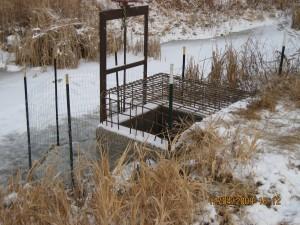 beaver deceiver fence
