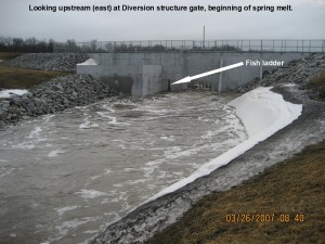 Diversion Fish ladder 2007